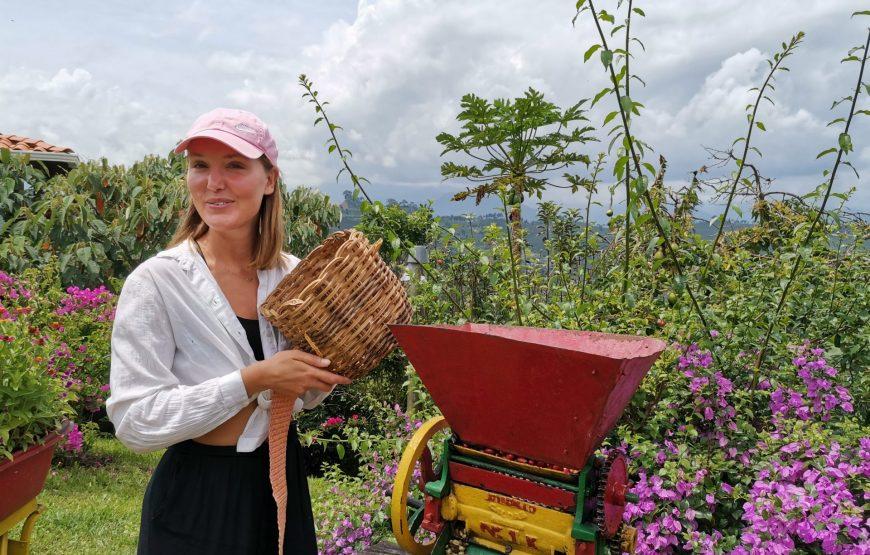 Reservar Tour Cafetero en Jardín, Antioquia