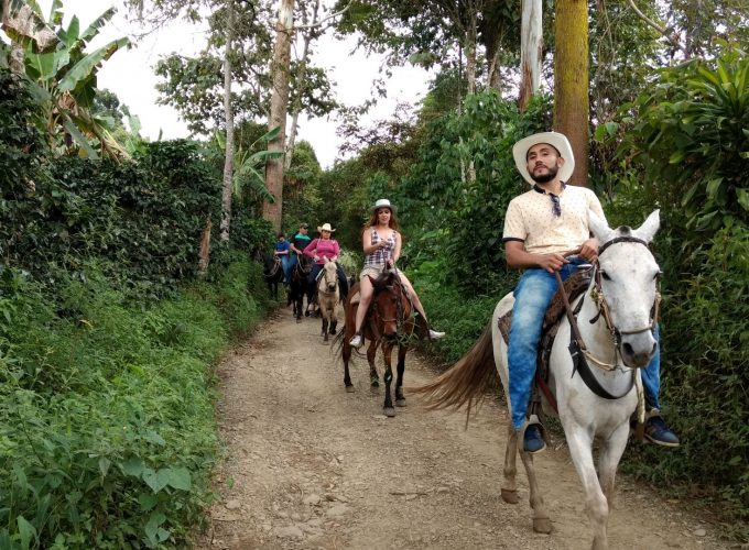 Reserva los mejores tours, actividades y atracciones turísticas de Colombia